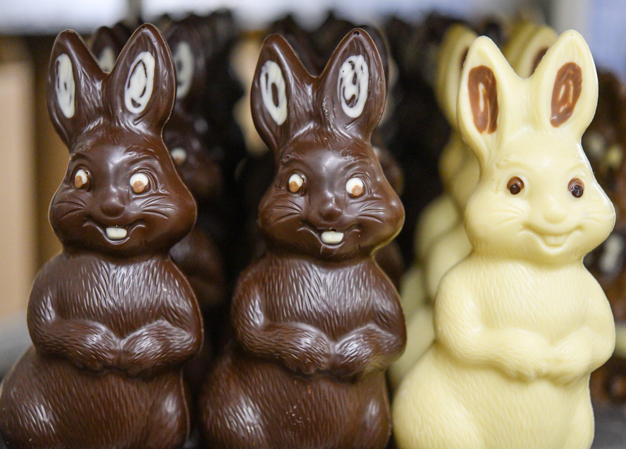 Bild zu Schokoladenhasen