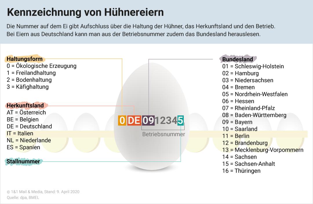 Bild zu Ei