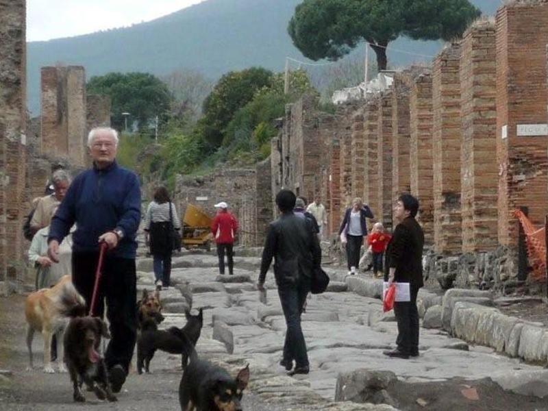 Bild zu Pompeji