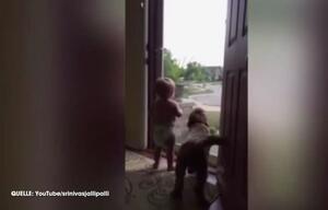 Hund Kind