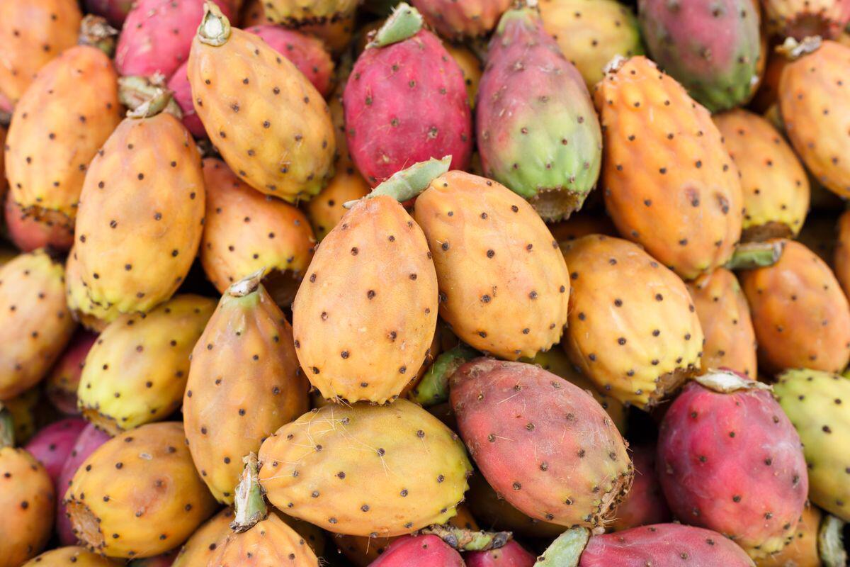 Bild zu Früchte, selten, kurios, obstsorte, Durian, Mangostane , Schlangenhautfrucht