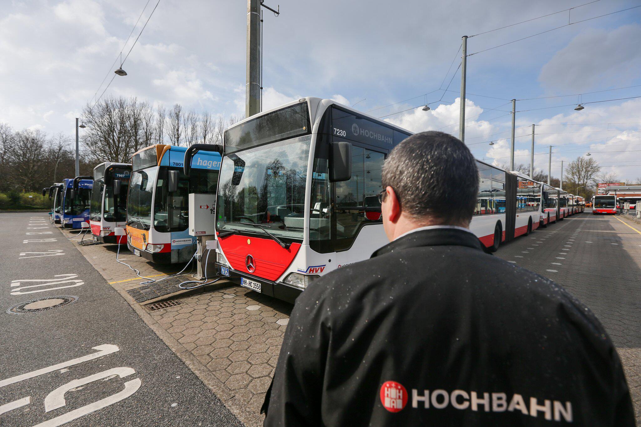 Bild zu Busse des Hamburger Verkehrsverbundes