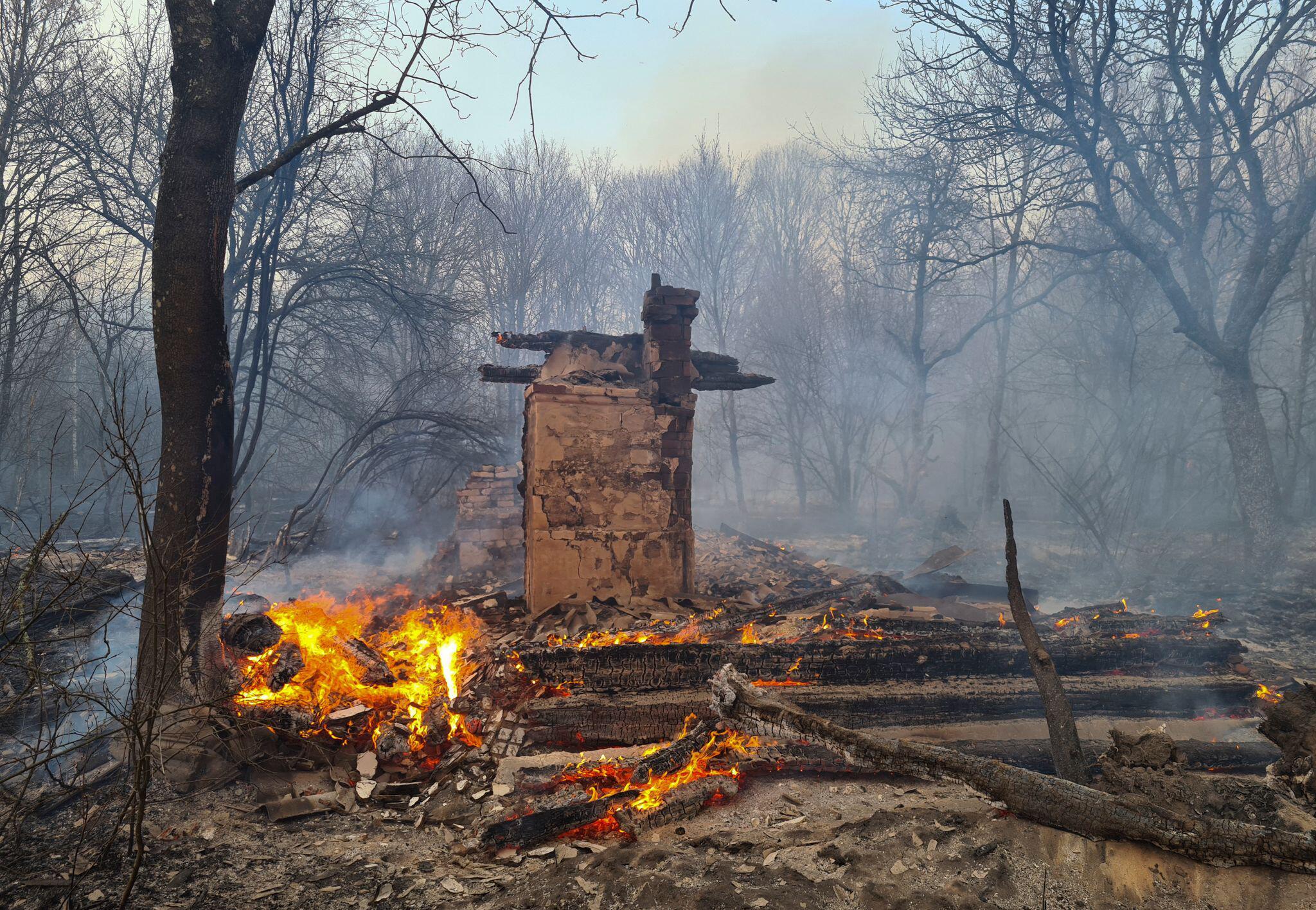 Bild zu Waldbrände in Tschernobyl