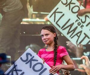 Globaler Klimastreik – New York