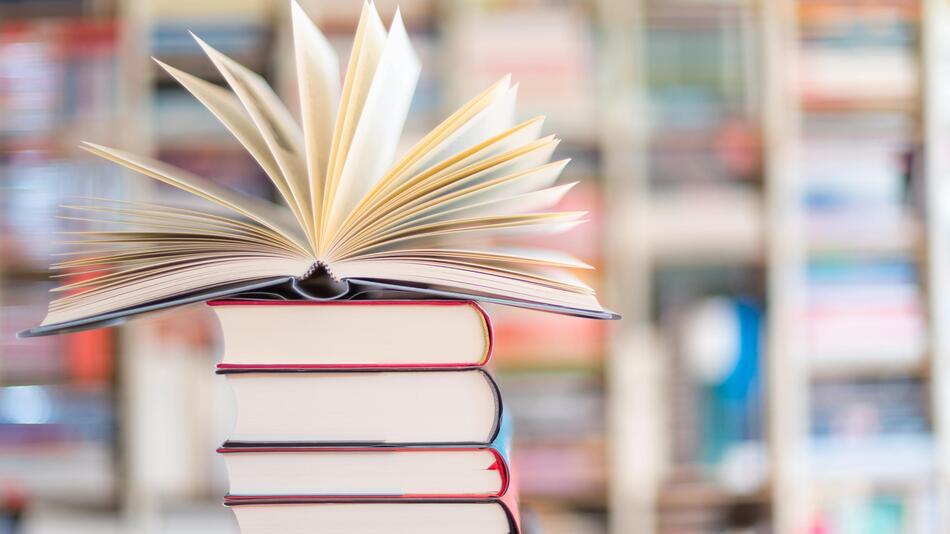 Bücher, Intelligenz, Weltbildungstag, Lesen, Wissen, Kinder, Denkspiele, Allgemeinbildung, Logik
