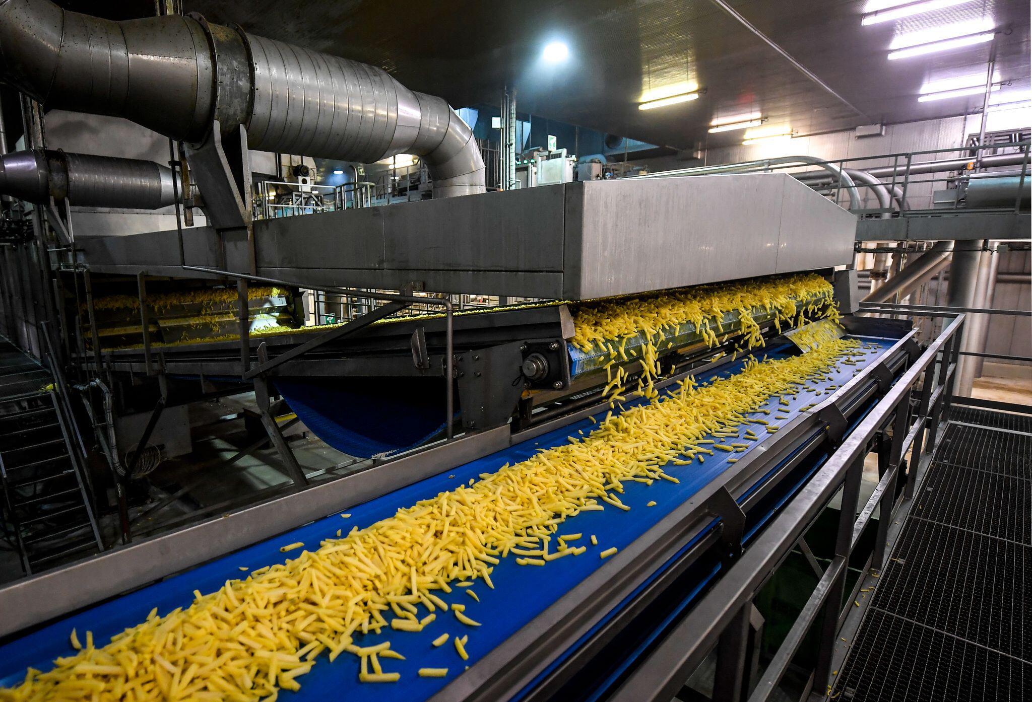 Bild zu Produktion von Pommes in Belgien
