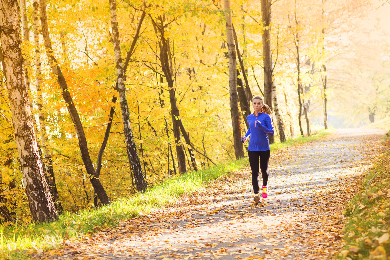 Bild zu joggen, Kälte, Herbst, Schutz, Hose, Handschuhe, Mütze, Winter, Wind, Regen, Sturm
