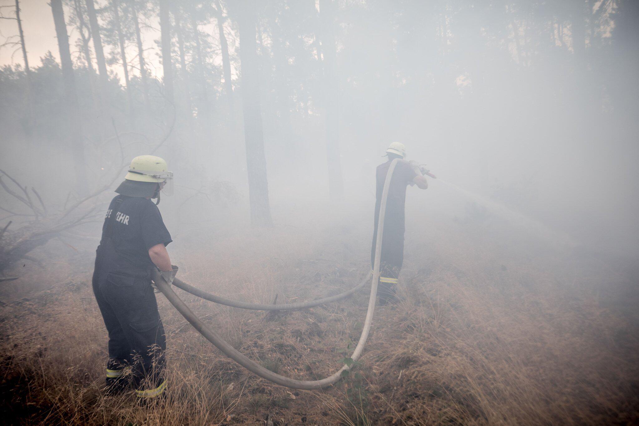 Bild zu Waldbrand Brandenburg