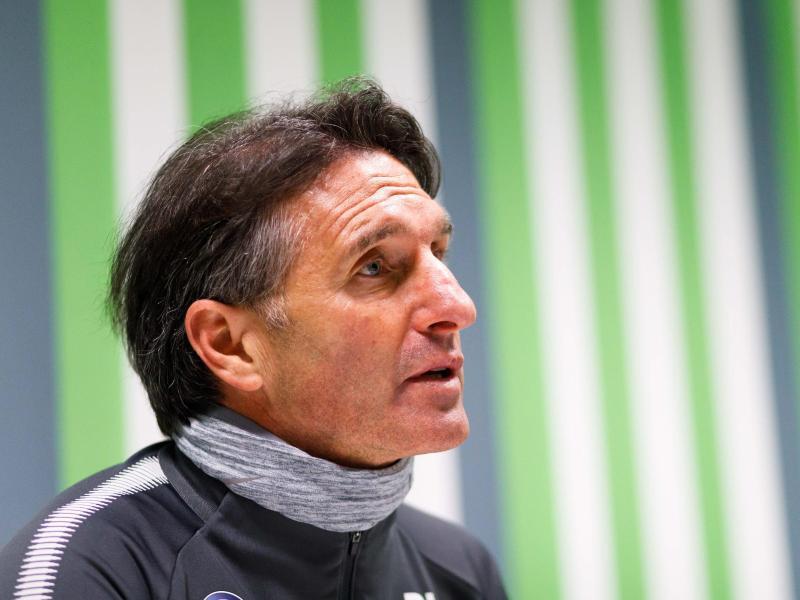 Bild zu VfL-Coach