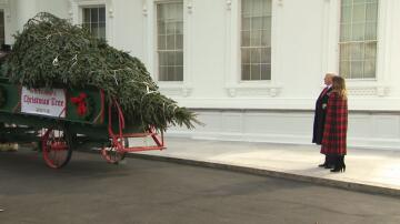 Bild zu Donald Trump, Weihnachtsbaum, Weißes Haus,