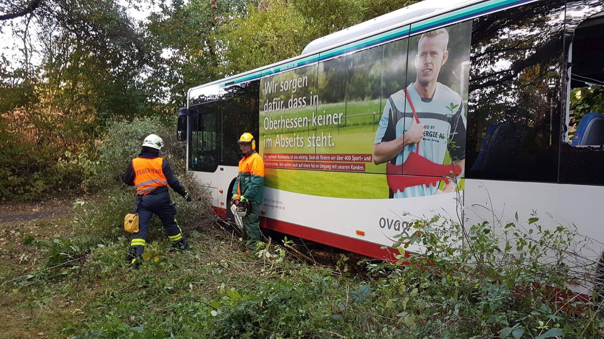 Bild zu Linienbus in Gießen fahrerlos in Waldstück gerollt