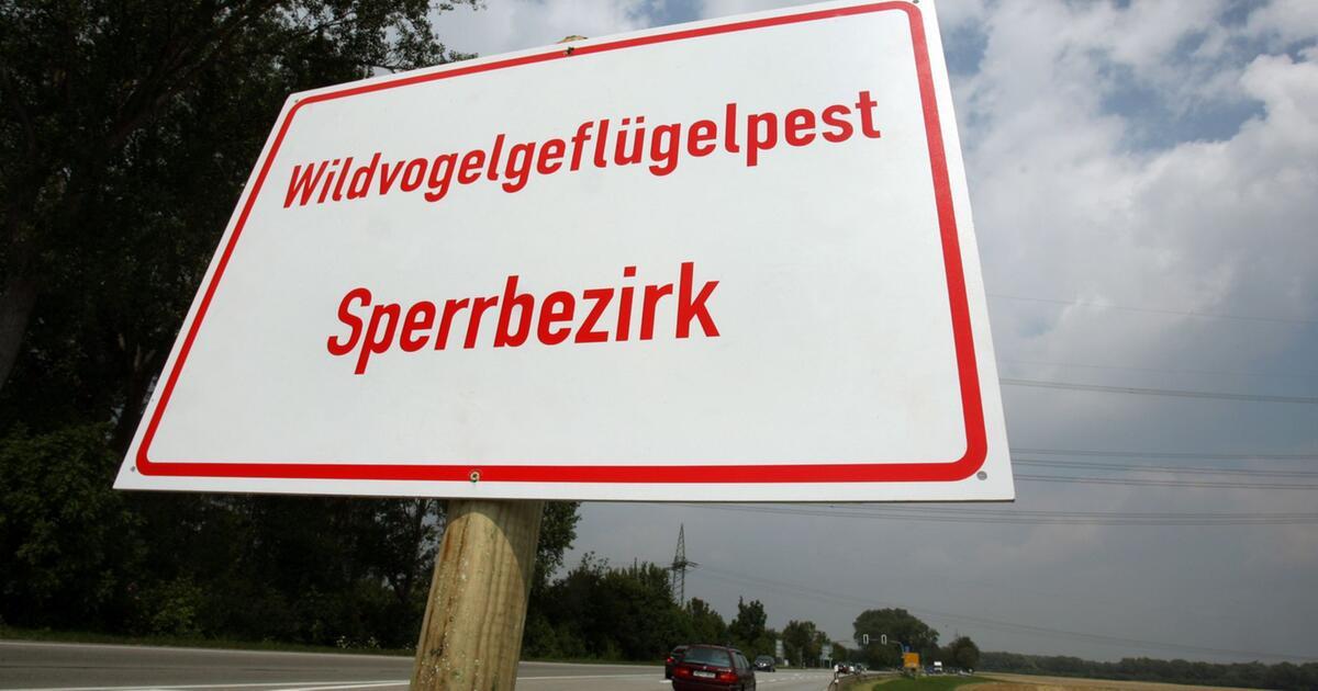Bayern Infizierte