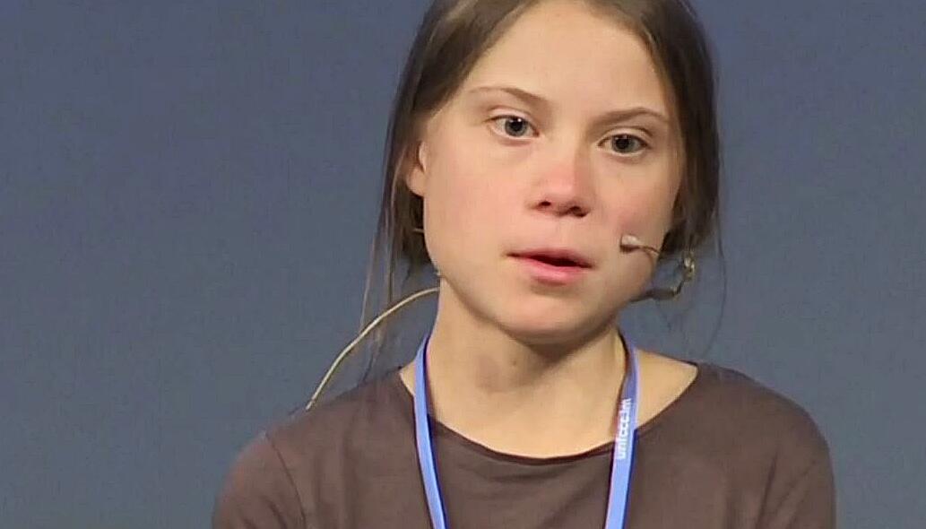 Bild zu Greta Thunberg