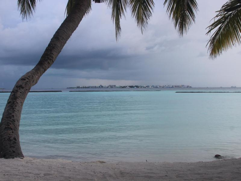 Bild zu Strand auf den Malediven