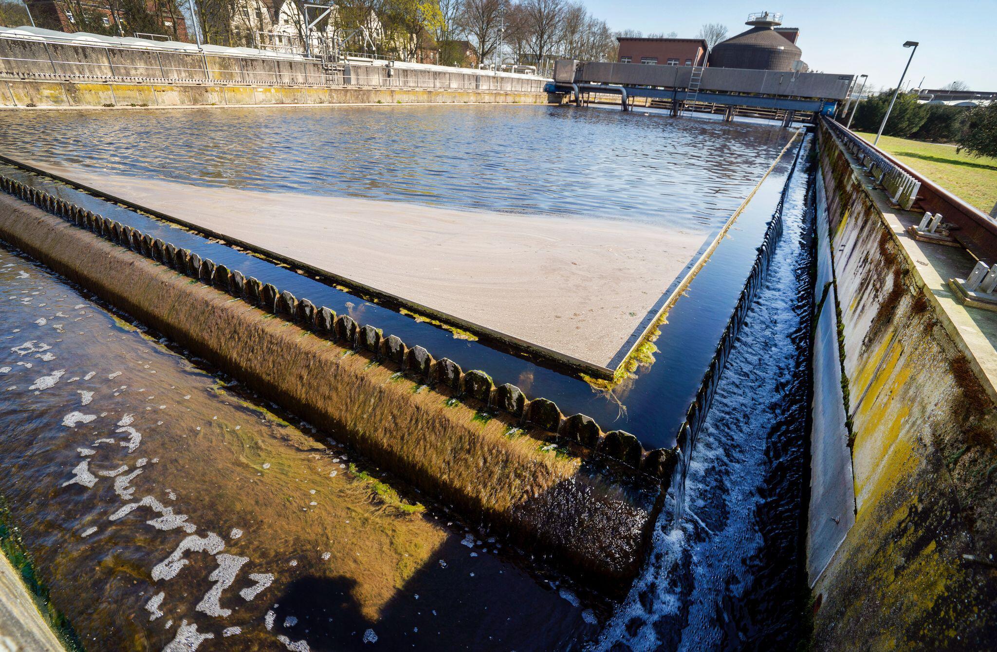Bild zu Abwasserproben sollen frühzeitig Hinweise auf Corona geben