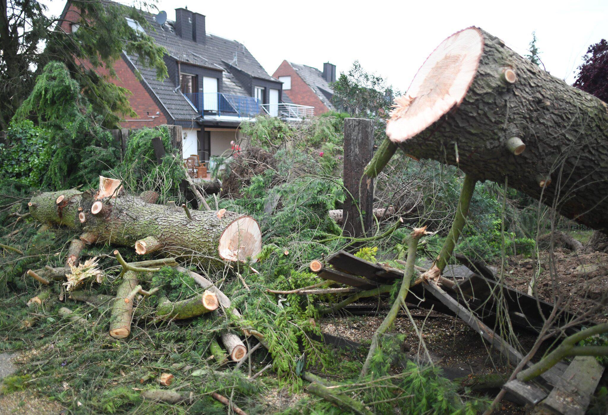 Bild zu Wirbelsturm, Niederrhein, Viersen,, Boisheim, Haus, Baum