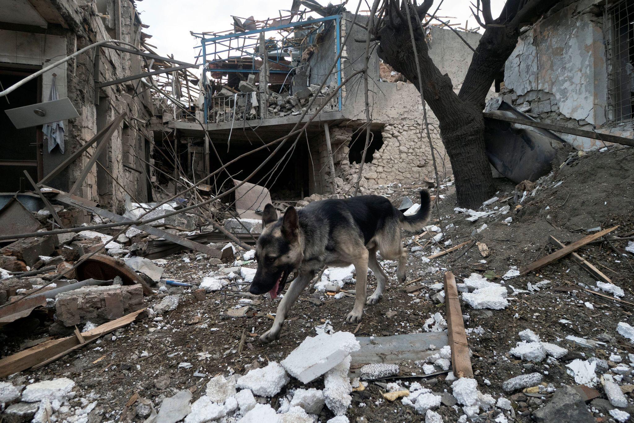 Bild zu Konflikt in Berg-Karabach