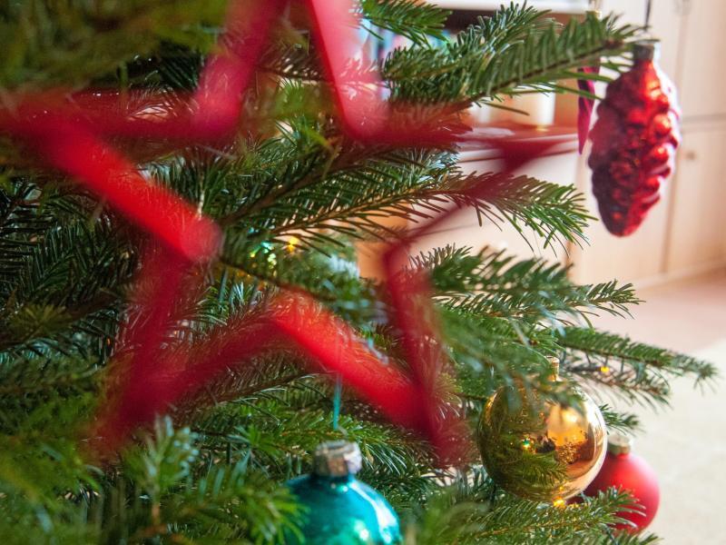 Bild zu Weihnachtsbaum