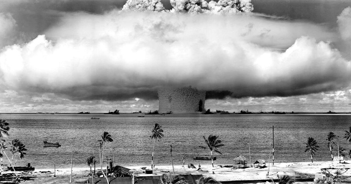 Bild zu Insel, Palmen, Urlaub, Gefahr, giftig, Schlange, Idylle, Radioaktivität, Naturkatastrophe