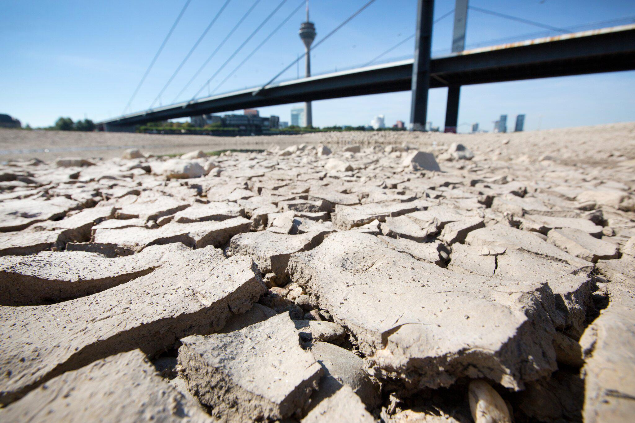 Bild zu Wetterdienst warnt vor weiterem Dürresommer
