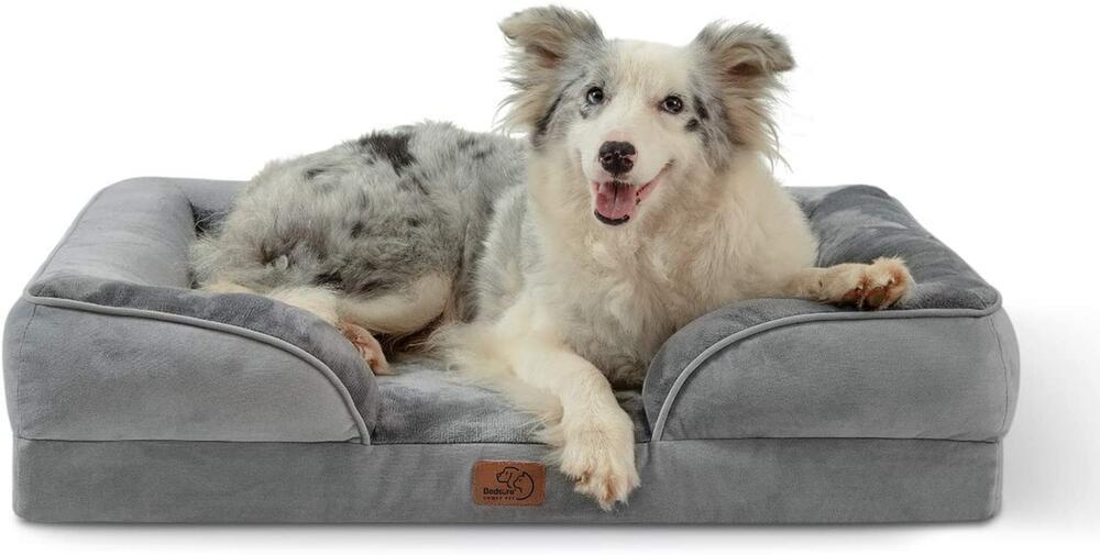 Hund, Hunde, Knochen, Beschäftigung, Haustier, Zubehör, Hundebett, Spielzeug