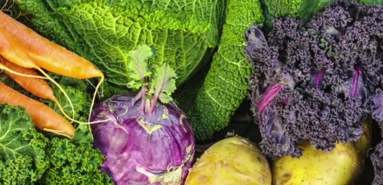 Bild zu Welches Gemüse hat eigentlich im Winter Saison?