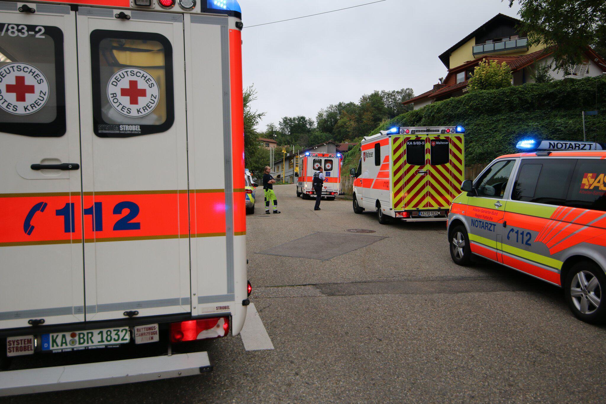 Bild zu Mehrere verletzte durch Angriff eines Hornissenschwarms