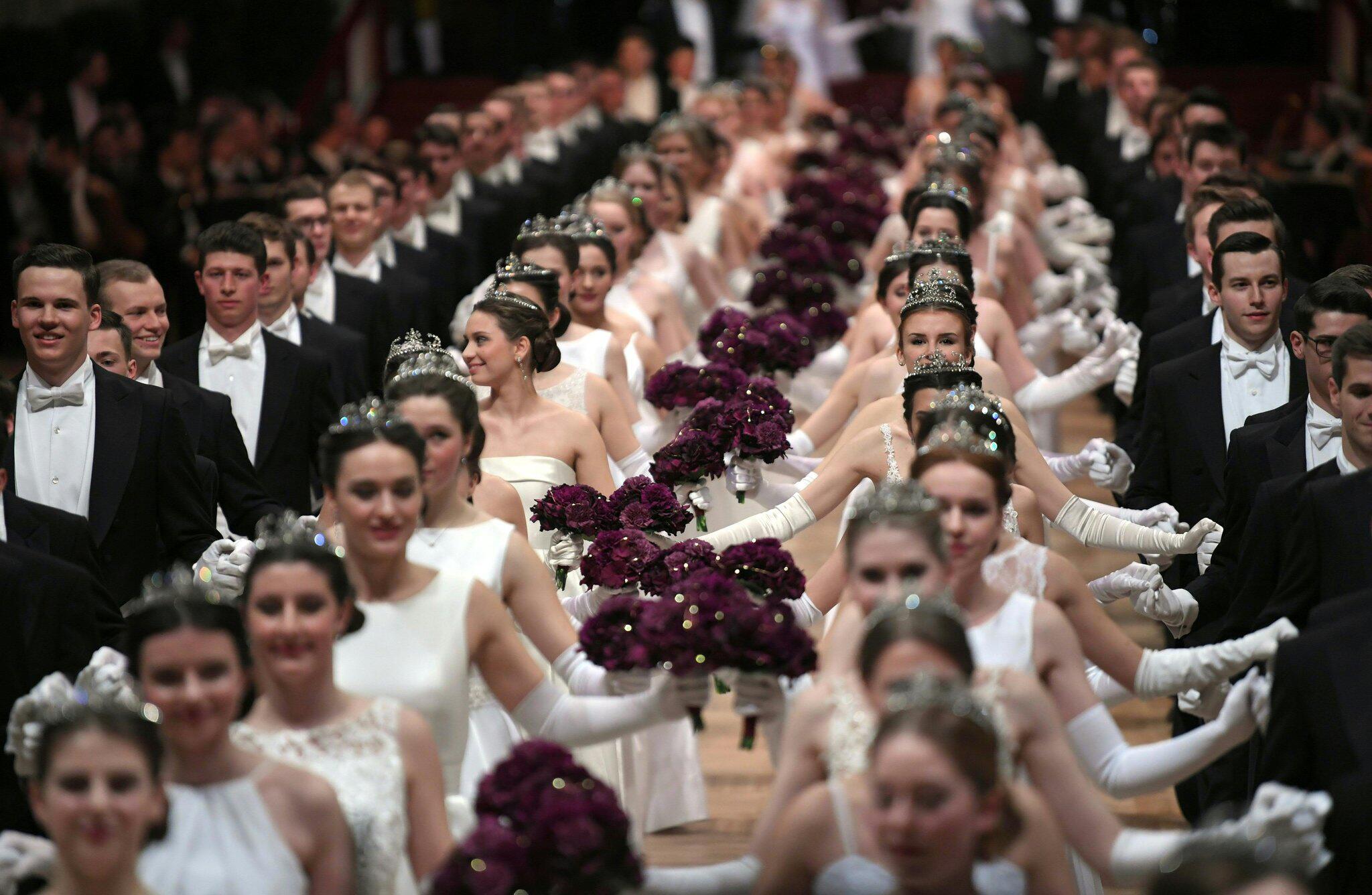Bild zu Wiener Opernball
