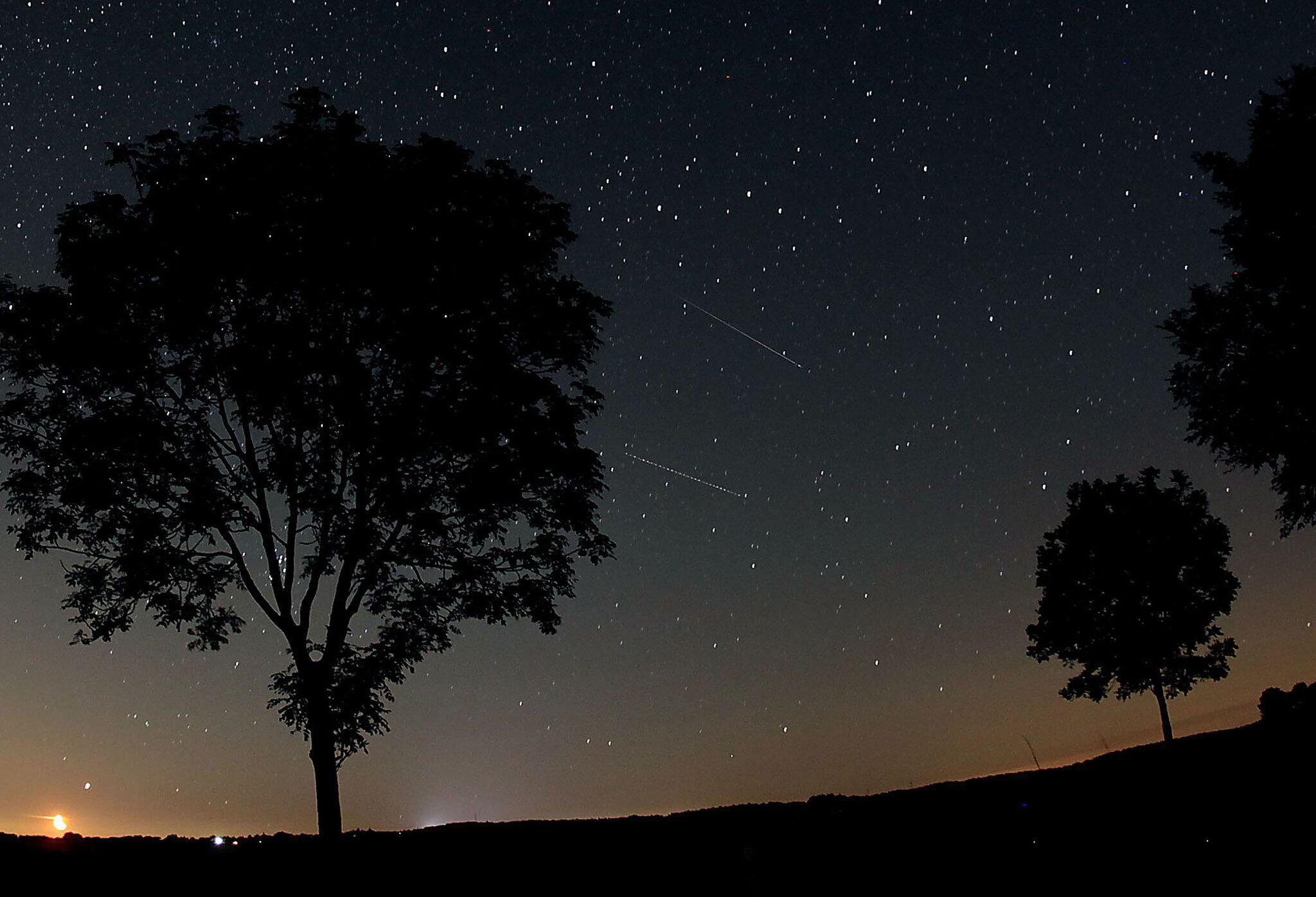 Bild zu Perseiden sorgen für Sternschnuppen-Show
