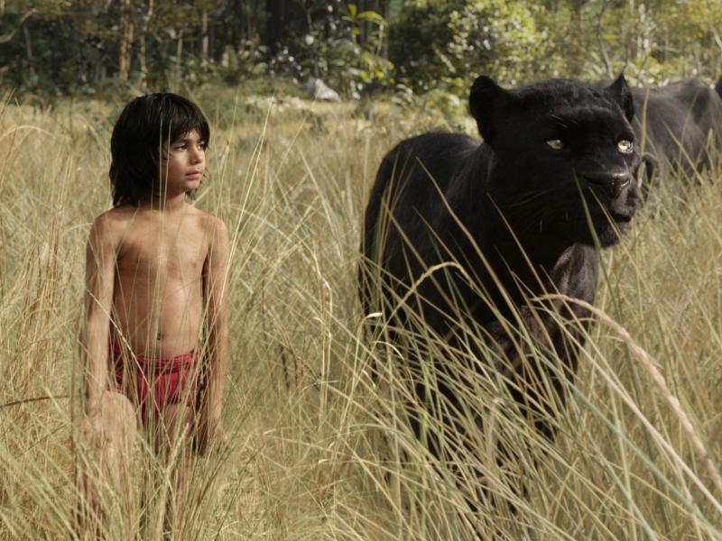 Bild zu Das Dschungelbuch