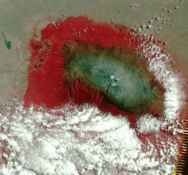 Bild zu Kilimandscharo 2010