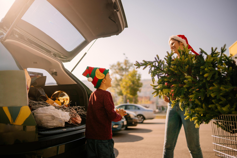 Bild zu Weihnachtsbaum, Transport