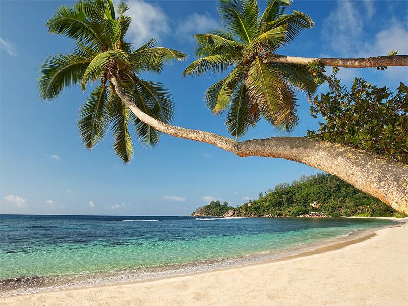 Bild zu Seychellen: am Strand von Mahé