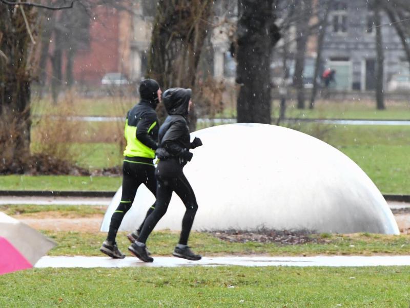 Bild zu Läufer im Park