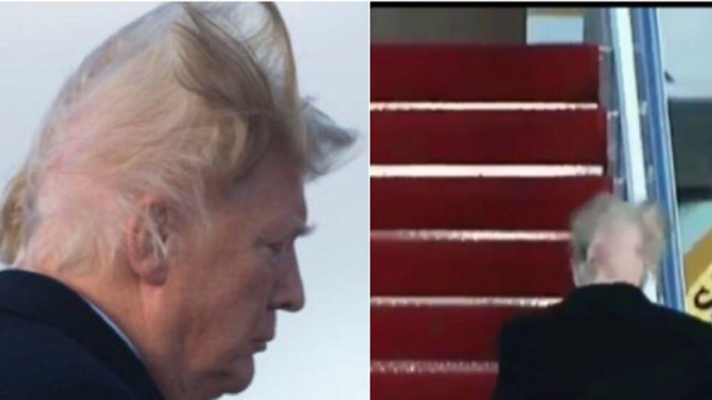 Bild zu Trumps Haare