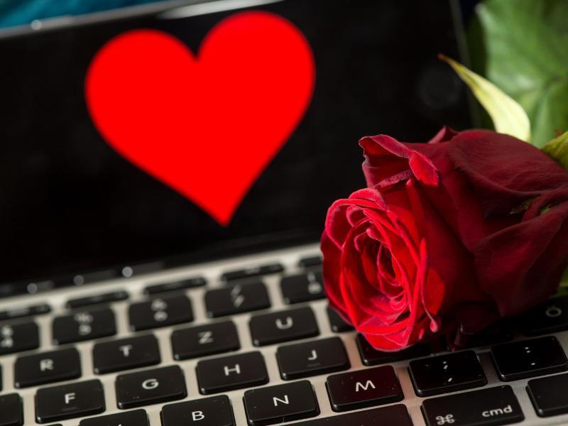 Bild zu Eine Rose liegt auf einer Tastatur