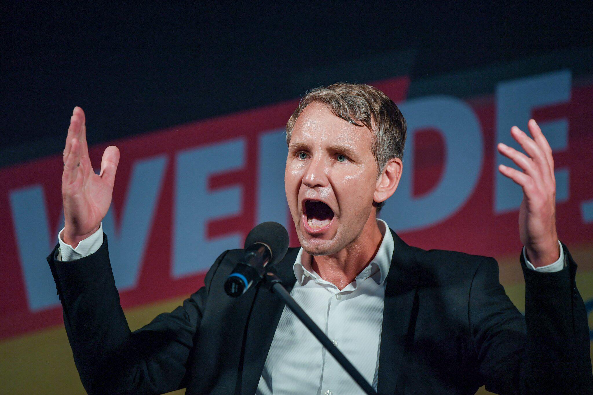 Bild zu Abschlusswahlkampf der AfD in Brandenburg