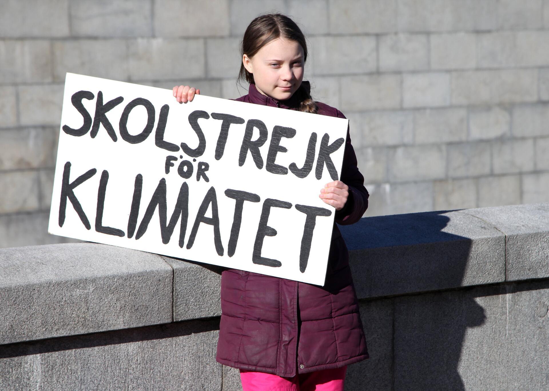 Bild zu Greta Thunberg streikt weiter online