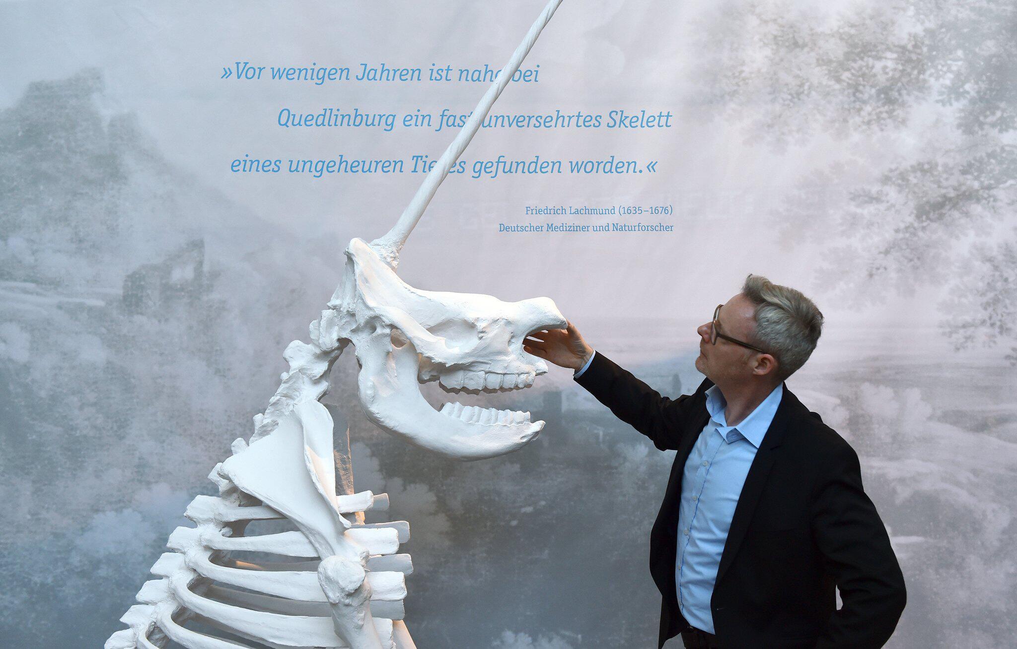 "Bild zu Exhibition ""Errors and Forgeries in Archaeology"""