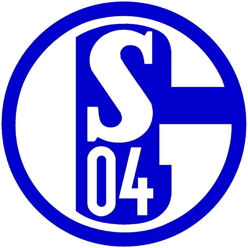 Bild zu Schalke 04