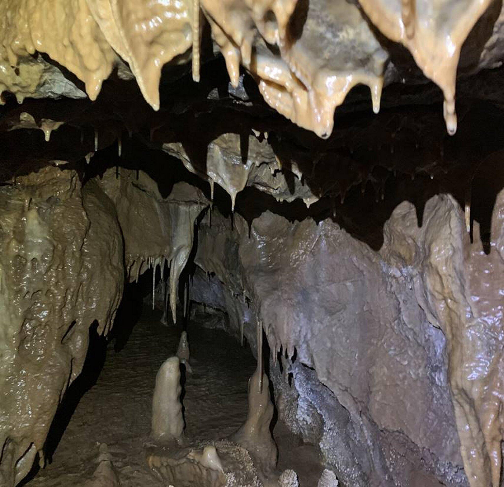 Bild zu Millionen Jahre altes Höhlensystem entdeckt