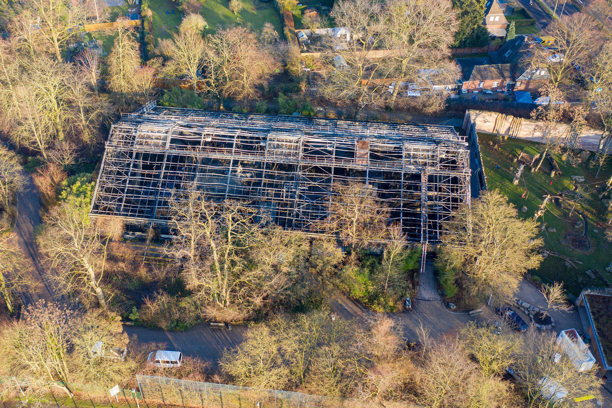 Bild zu Brand im Krefelder Zoo