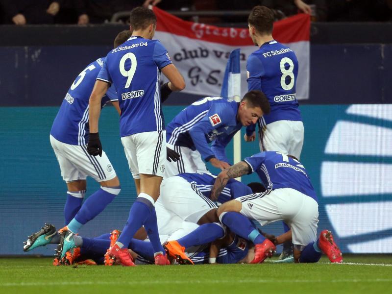 Bild zu FC Schalke 04 - 1899 Hoffenheim