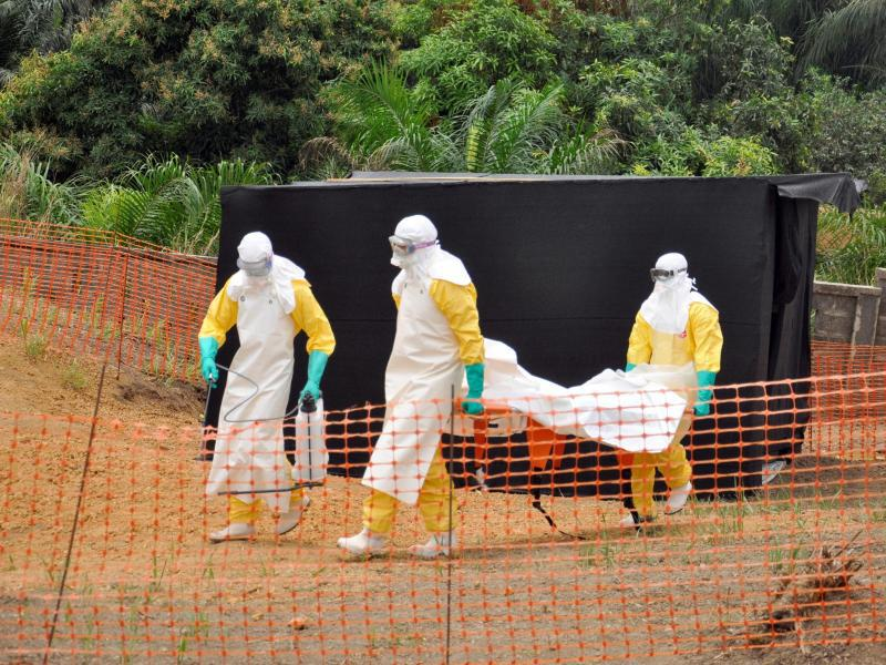 Bild zu Ebola-Epidemie