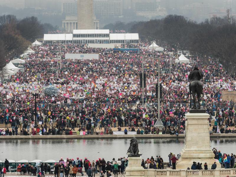 Bild zu Proteste gegen Trump