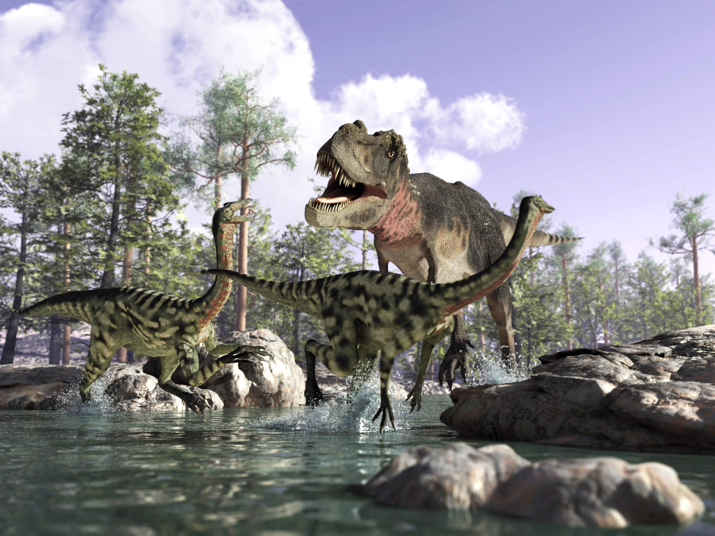 Bild zu Dinosaurier