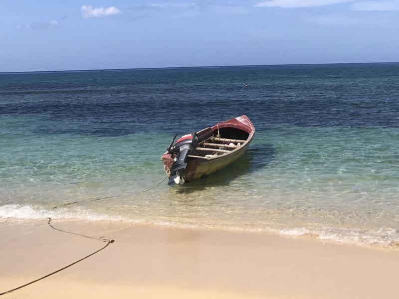 Bild zu Karibik-Strand