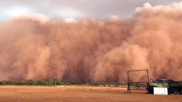 Bild zu Bedrohlicher Sandsturm in Australien.