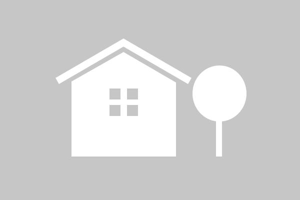 Bild zu Icon Haus und Baum